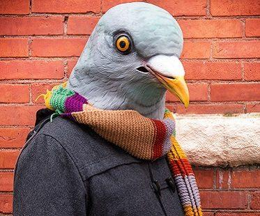 pidgeon-head-mask-costume.jpg
