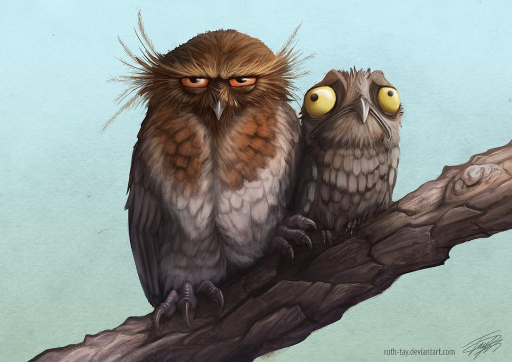 potoo_camouflage_by_ruth_tay-d96x36y.jpg