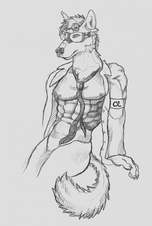 wolf_sketch_cropped.png