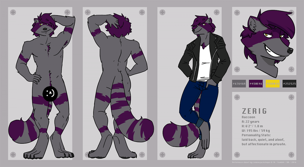 ref_sheet_censored.png